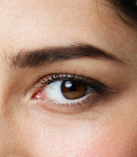 Astor Eyebrows